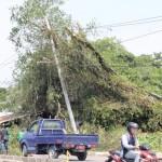Evakuasi_Pohon_Tumbang_di_Jalan_Sungai_Sesayap_1