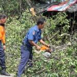 Evakuasi_Pohon_Tumbang_di_Jalan_Sungai_Sesayap_2