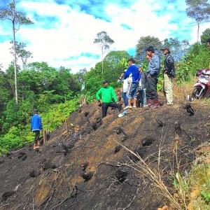 Memberdayakan masyarakat dididalam kawasan hutan lindung, menjadikan daerah gersang untuk ditanami kembali (run)