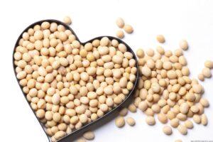 kacang kedelai kaya manfaat (google)