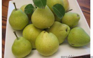 buah pir (google)