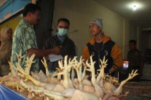 Petugas lakukan sidak kepada pedagang ayam di pasar gusher Tarakan (hfa)