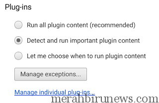 plugin settings detect and run- mportant