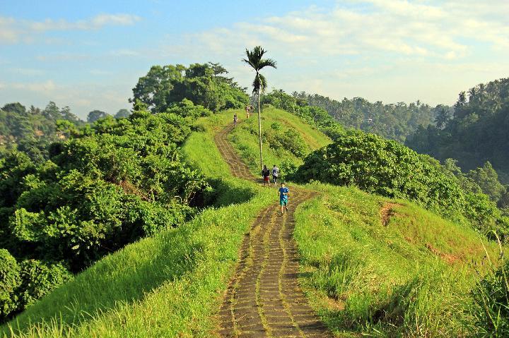 Bukit Campuhan Bali